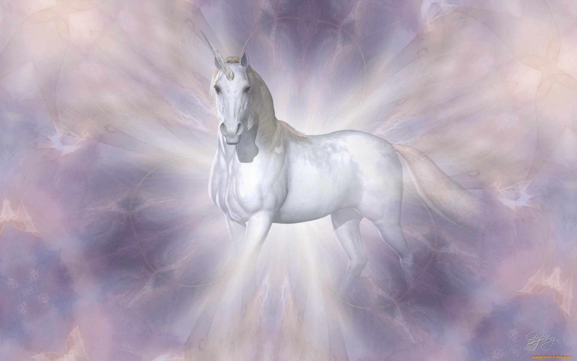 Фотографии для обои с лошадьми и единорогами